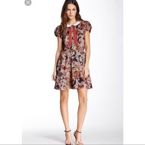 W118 By Walter Baker Floral Mini Collared Dress